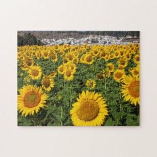 Sunflower fields, white hill town of Bornos Jigsaw Puzzle