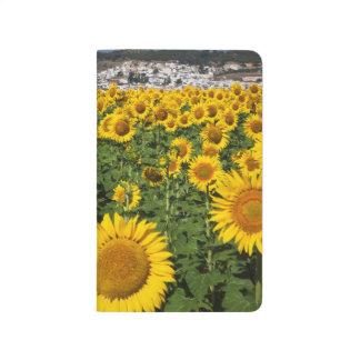 Sunflower fields, white hill town of Bornos Journal