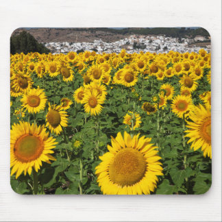 Sunflower fields, white hill town of Bornos Mouse Mat