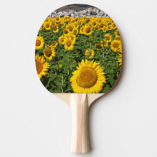 Sunflower fields, white hill town of Bornos Ping Pong Paddle