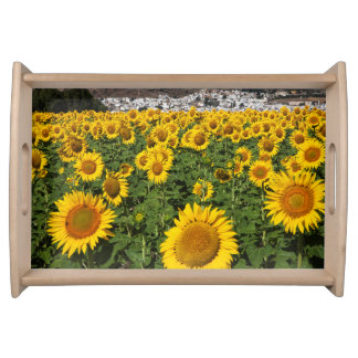 Sunflower fields, white hill town of Bornos Serving Tray