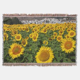 Sunflower fields, white hill town of Bornos Throw Blanket
