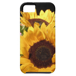 Sunflower Flower Bouquet Sunflowers Floral Photo iPhone 5 Cover