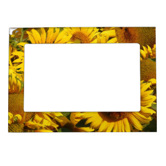 Sunflower Flowers Garden Floral Magnetic Frame