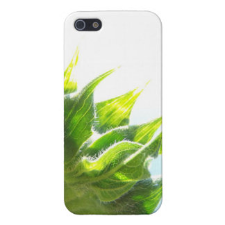 Sunflower for iPhone 5/5S iPhone 5 Covers