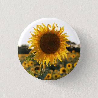 Sunflower garden.Beautiful flowers 3 Cm Round Badge