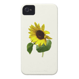 Sunflower Gazing Down Case-Mate iPhone 4 Case