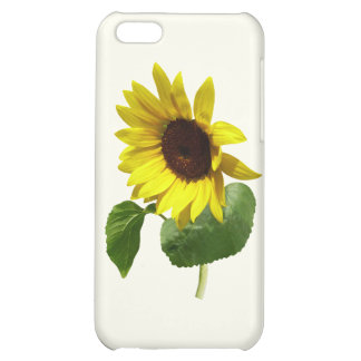 Sunflower Gazing Down Cover For iPhone 5C