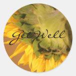 Sunflower, Get Well Stickers