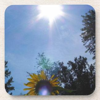 Sunflower Glow Drink Coaster