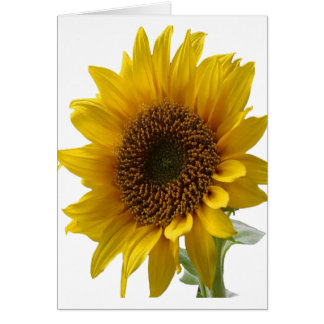 Sunflower greeting Card for Her