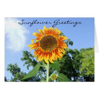 Sunflower Greetings Card