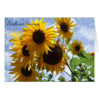 Sunflower Greetings Cards