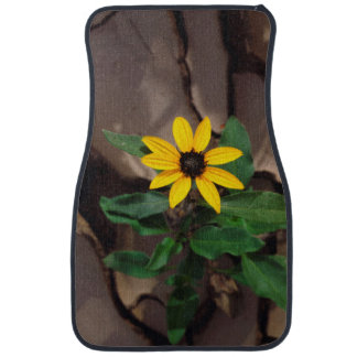 Sunflower growing from Cracked Mud Car Mat