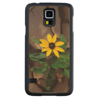 Sunflower growing from Cracked Mud Carved Maple Galaxy S5 Case