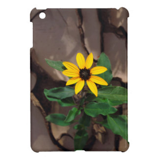 Sunflower growing from Cracked Mud Case For The iPad Mini