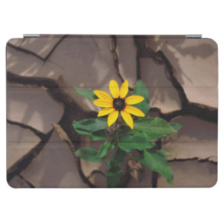 Sunflower growing from Cracked Mud iPad Air Cover