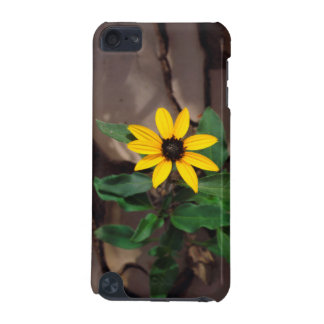 Sunflower growing from Cracked Mud iPod Touch (5th Generation) Covers