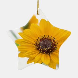 sunflower in midsummer ceramic star decoration