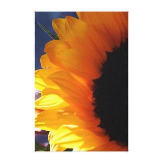 Sunflower in Summer - Canvas
