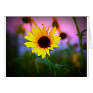 Sunflower in Sunset Card