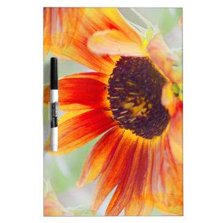 sunflower in the garden dry erase board