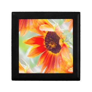 sunflower in the garden gift box