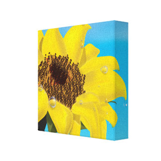 Sunflower in the Sunshine Canvas Prints