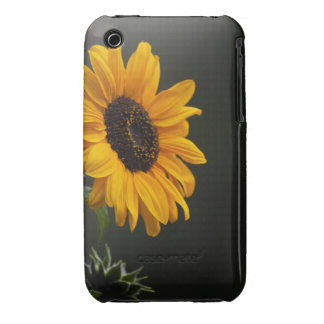 Sunflower iPhone 3 Cover