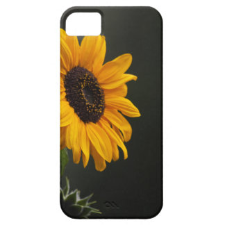 Sunflower iPhone 5 Case Mate CAse