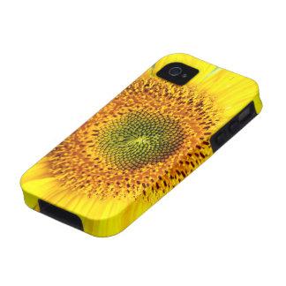 Sunflower macro Case-Mate iPhone 4 cover