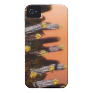 Sunflower Macro iPhone 4 Case