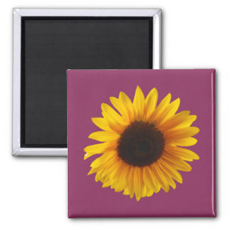 Sunflower Magnet (Gold and Raspberry)