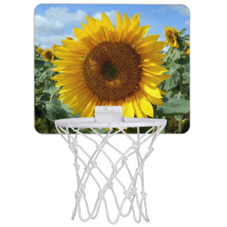 Sunflower Mini Basketball Hoop