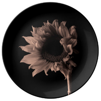 Sunflower - Monochrome Fine Art Photograph Plate