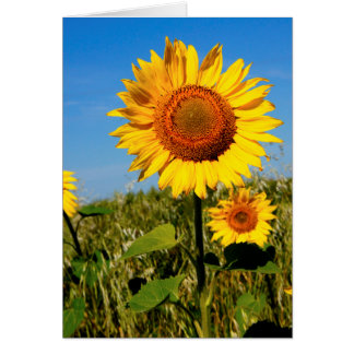 Sunflower Mother s Day Bible Quote Christian Greeting Card