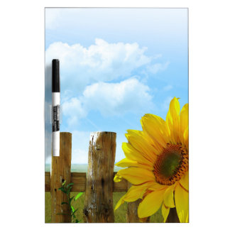 Sunflower Nature Beauty Dry Erase Board