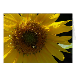 Sunflower Notecard Stationery Note Card
