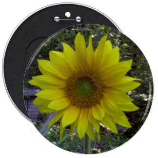 Sunflower, Old Orchard Beach, Maine Button