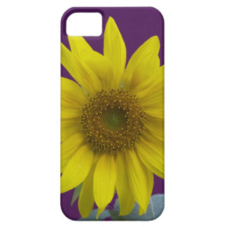 Sunflower on Purple Case For The iPhone 5