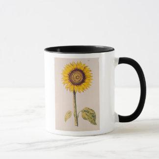 Sunflower or Helianthus Mug