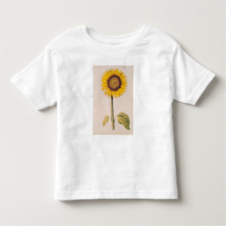 Sunflower or Helianthus Toddler T-Shirt