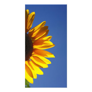 Sunflower Personalised Photo Card