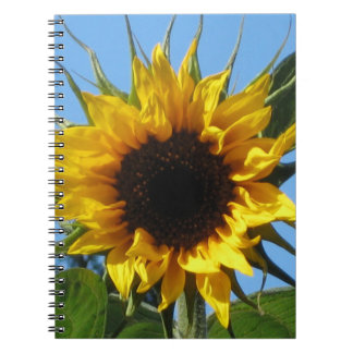Sunflower Photo Notebook Black & White Lined Pages