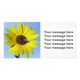 Sunflower Photocard Photo Cards