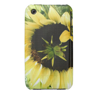 Sunflower Picture on Blackberry Curves Case-Mate iPhone 3 Cases