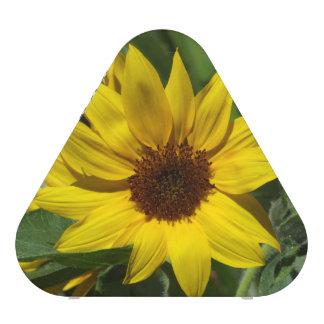 Sunflower Pieladium Speaker