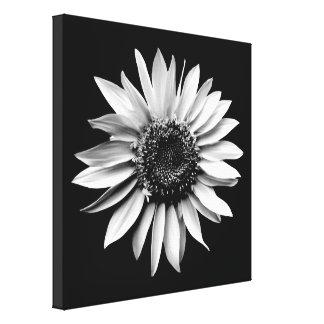 'Sunflower Portrait' Wrapped Canvas Print