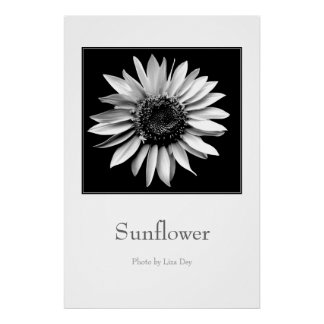 'Sunflower' Poster