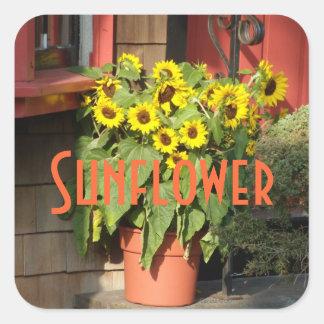 Sunflower Pot Square Sticker